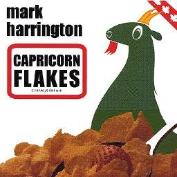 275140-Capricorn_Flakes_CD.jpg