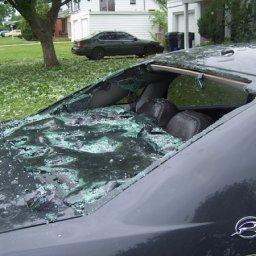 impala_damage12.jpg