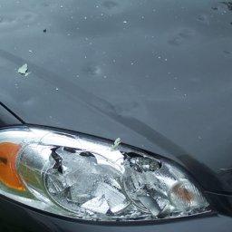 impala_damage14.jpg