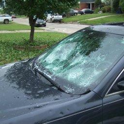 impala_damage16.jpg